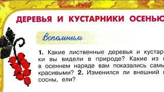 Окружающий мир 2 класс, Перспектива, с.78-81, тема урока «Деревья и кустарники осенью»