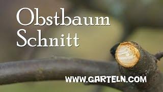 Repeat youtube video Obstbaumschnitt von Jänner bis März