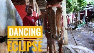 KUDA PACU || DANCING ECLIPSE  || PEMULA C/D 1.200 M || EVENT DERBY INDONESIA || 2021