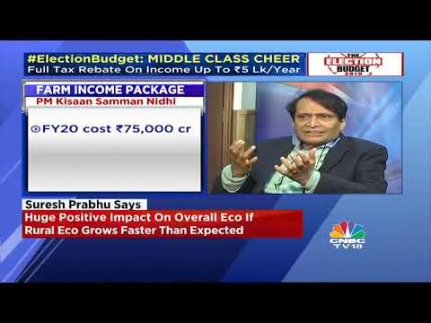 Suresh Prabhu On Budget 2019