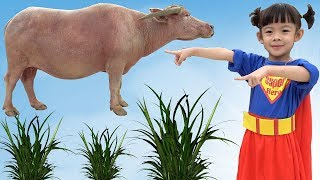 Con Trâu – Siêu Nhân Đi Chăn Trâu Và Xem Trâu ❤ AnAn ToysReview TV ❤