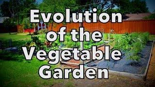 The Evolution of our Vegetable Garden