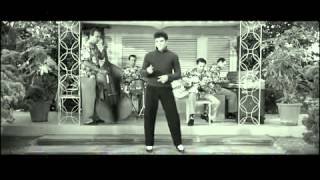 Elvis Presley Don´t Leave Me Now & Baby I Don´t Care Plus Lyrics
