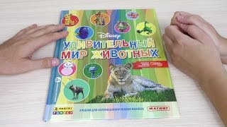 Альбом Удивительный мир животных Disney. Листаем