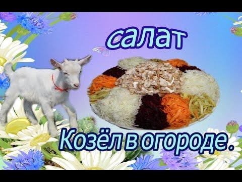 Салат  Козёл в огороде  вкусный и полезный .