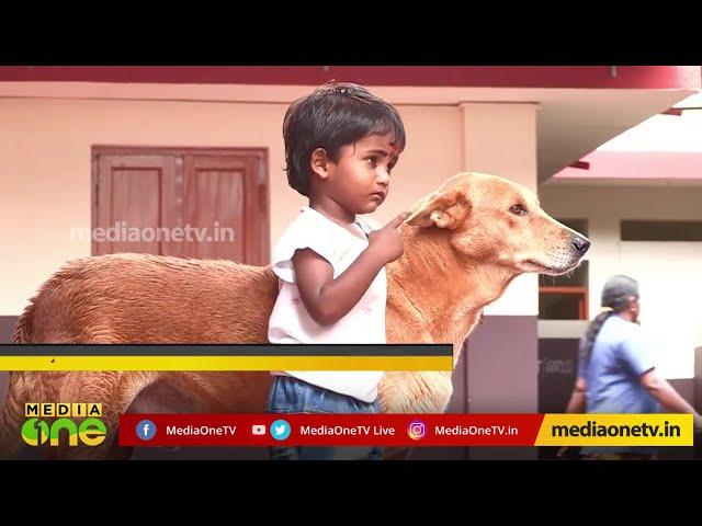 Aadhi's Special Friend | ദുരിതത്തിലും കൈ വിടാത്ത ആദിയുടെ സൌഹൃദം