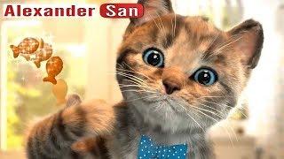 ПРИКЛЮЧЕНИЕ МАЛЕНЬКОГО КОТЕНКА мультик игра КАК КОТ В САПОГАХ симулятор маленького котенка