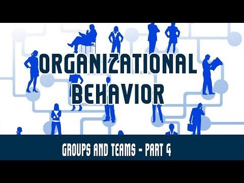 Management | Organizational Behavior | Groups and Teams Part 4 - Group Dynamics