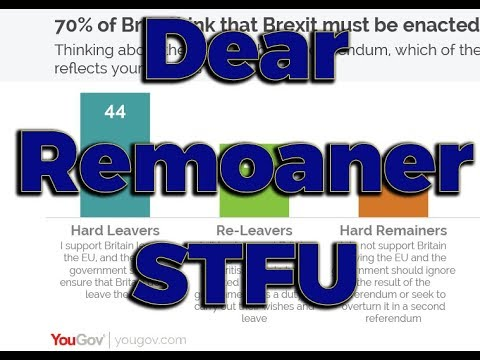 Dear Remoaners: Here are the Brexit facts, now kindly shut up
