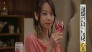 「ワインサワー」篇 「レモンジンジャー」篇 ↓ ロッテ フレバ 堀北真希 ...