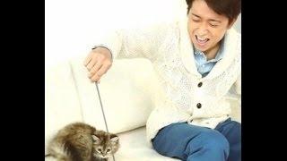 嵐大野智さんの 少しだけ長めの 可愛め動画です。 BGM Oh Yeah! LIVEver...