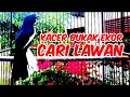 Kacer Gacor Cari Lawan Pancingan Kacer Hobi Kita  Mp3 - Mp4 Download