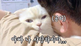 순무는 아빠가 고양이라고 생각하는 것 같아요