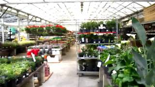 № 517 США Строительный Магазин LOWE'S Шикарный Сад