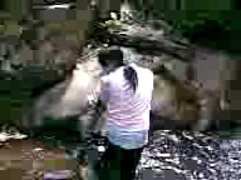 Suối Mỡ - Bắc Giang 7/2008 (phần 3) - Tạ Văn Trường
