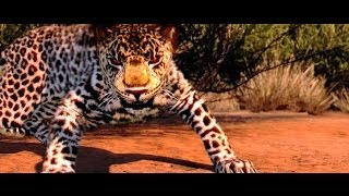 Let´s Test Cabela's African Adventures PC [ HD ]