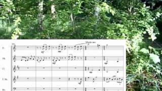 Details for wind quintet.wmv