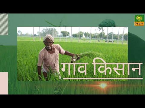 गांव किसान : जैविक खेती के लाभ व तरीके | Advantages of Organic Farming | July 24, 2020