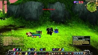 Mist of Pandaria Beta: Pandaren Shaman Totems.