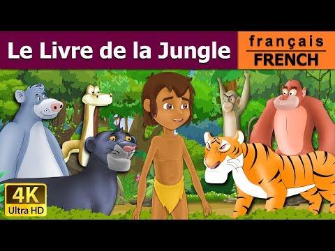 Le Livre De La Jungle | Histoire Pour S'endormir | Histoire Pour Les Petit | Contes De Fées Français