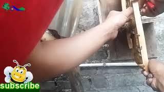 Cara Membuat Kotak Budidaya Dua Pintu