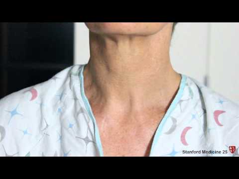 Bronchial and Vesicular Breath Sounds