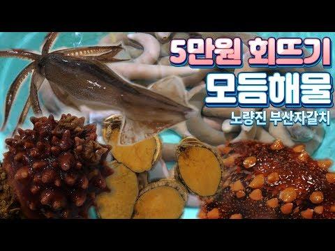 5종 해물모듬 / 개불 / 해삼 / 멍게 / 전복 / 산오징어 / 5만원회뜨기 /  Various Seafood Sashimi/Korean street food