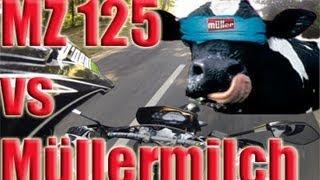 Mz 125 Sx vs Müllermilch Kühe thumbnail
