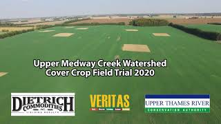 Medway Cover Crops Test Site