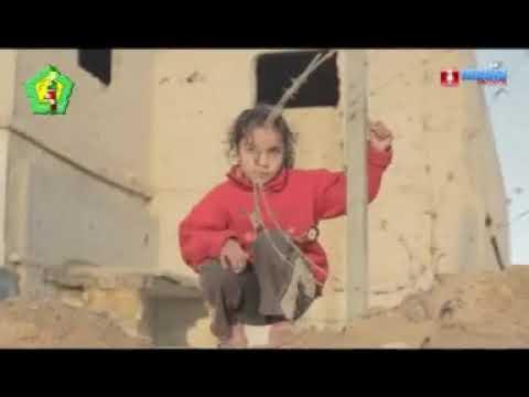 Sholawat Tpq An Nahdliyah Langitan 3 Do A Untuk Palestina