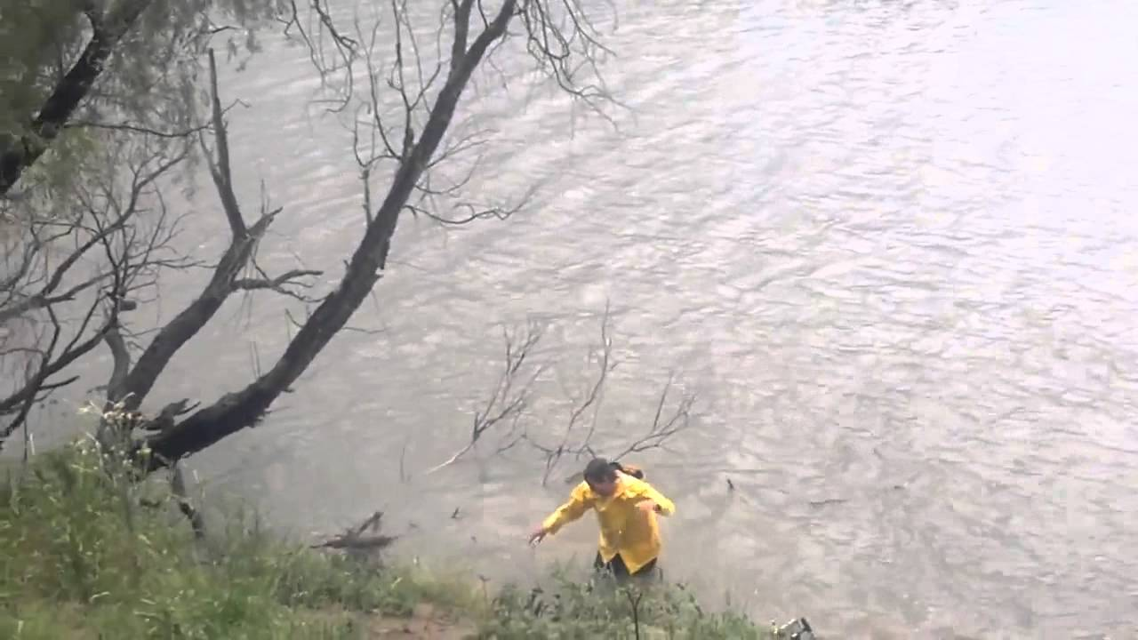 Funny Video: Fisherman Attempts To Get His Lure Out of a Tree