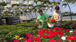 UMC Commercial Floriculture Spring 2014