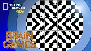 Wavy Lines … or Are They? | BRAIN GAMES