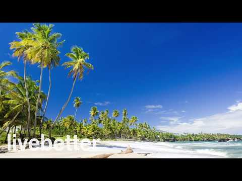 Calypso of Trinidad and Tobago Instrumental Cheerful Tropical Caribbean Beach