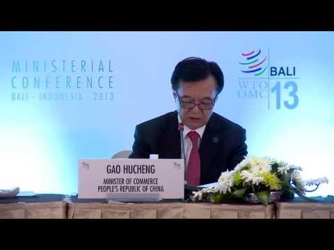 GAO HUCHENG - WTO MC9 BALI INDONESIA