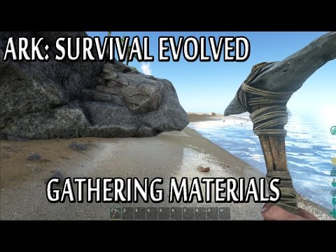 Ark: Survival Evolved - Gathering Materials and Getting a Weapon (Wood, Thatch, Flint, Stone)
