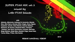 REGGAE DANCEHALL RIDDIM - SUPER FYAH MIX - 2012