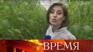 СУкраины опять выдворили российскую журналистку.