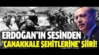 Erdoğan'ın sesinden 'Çanakkale Şehitlerine'...''Bedr'in aslanları ancak, bu kadar şanlı idi.!''