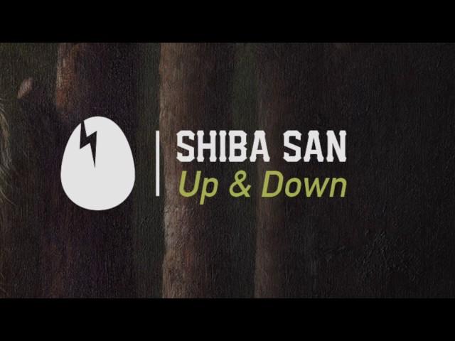 Shiba San - Up & Down [DIRTYBIRD]