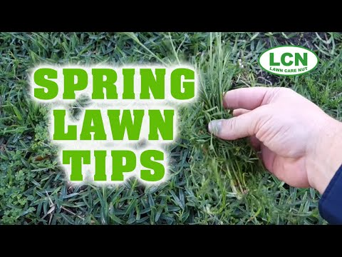 Spring Lawn Fertilizing Weed Control Tips