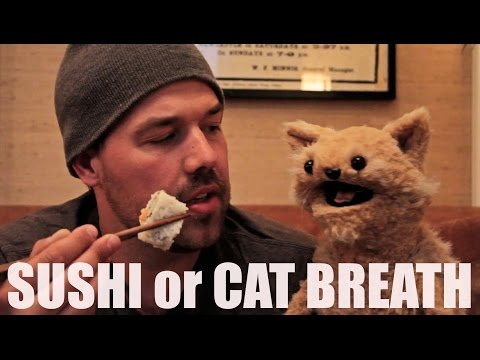 This Cat is NED: EP 19 - SUSHI or CAT BREATH