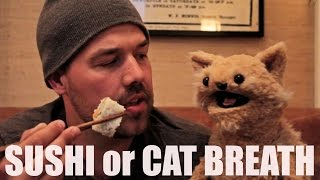 This Cat Is NED EP 19 SUSHI Or CAT BREATH