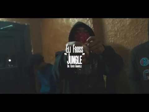 Eli Fross - Jungle (Music Video) [Shot by Ogonthelens]