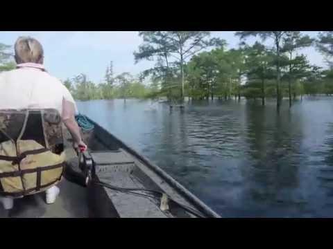 2015 Felsenthal Breamfest Boat Ride