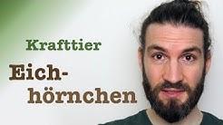 Krafttier Eichhörnchen // Schamanismus mit Benjamin Maier