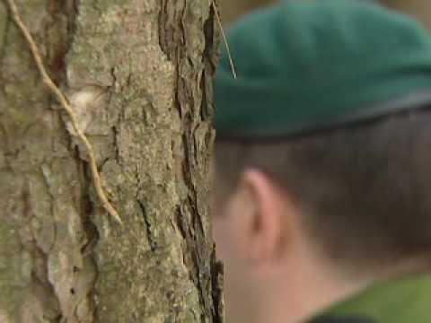 Uk sniper trainign Royal airforce regiment