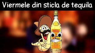 Care-i Treaba Cu Viermele Din Sticla De Tequila? - DLJ#1