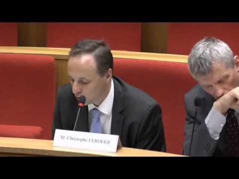 Audition de représentants de la direction générale des entreprises au ministère de l'économie, de l'