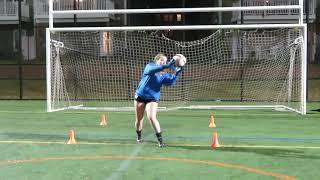 Goal Keeping Training.